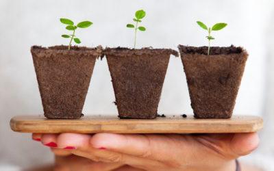 Do you choose to grow or throw?
